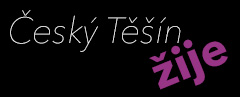 Logo CeskyTesinZije.cz